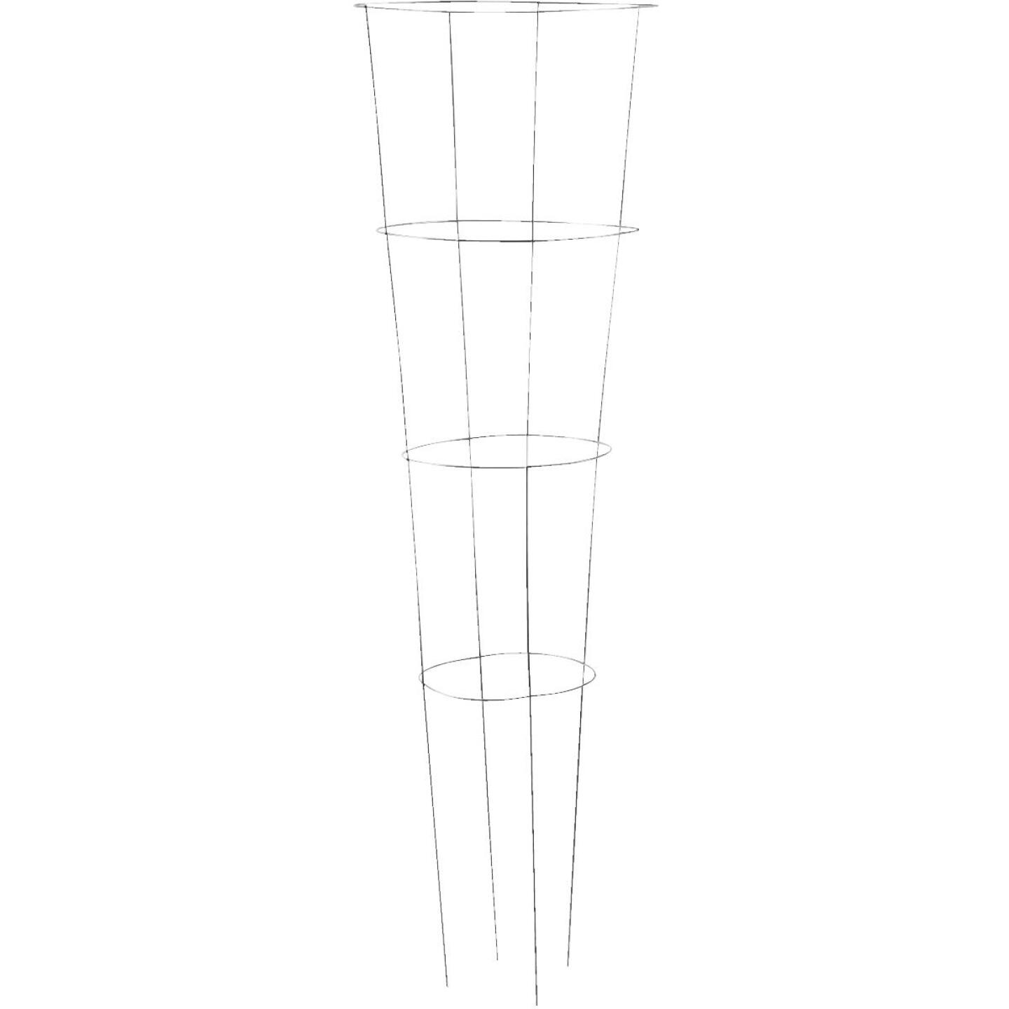 Panacea 54 In. Galvanized Heavy-Duty Wire Tomato Cage Image 1