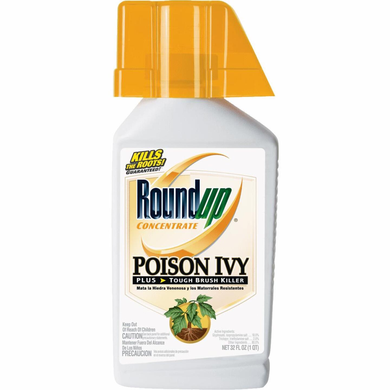 Roundup 1 Qt. Concentrate Poison Ivy Plus Tough Brush Killer Image 1