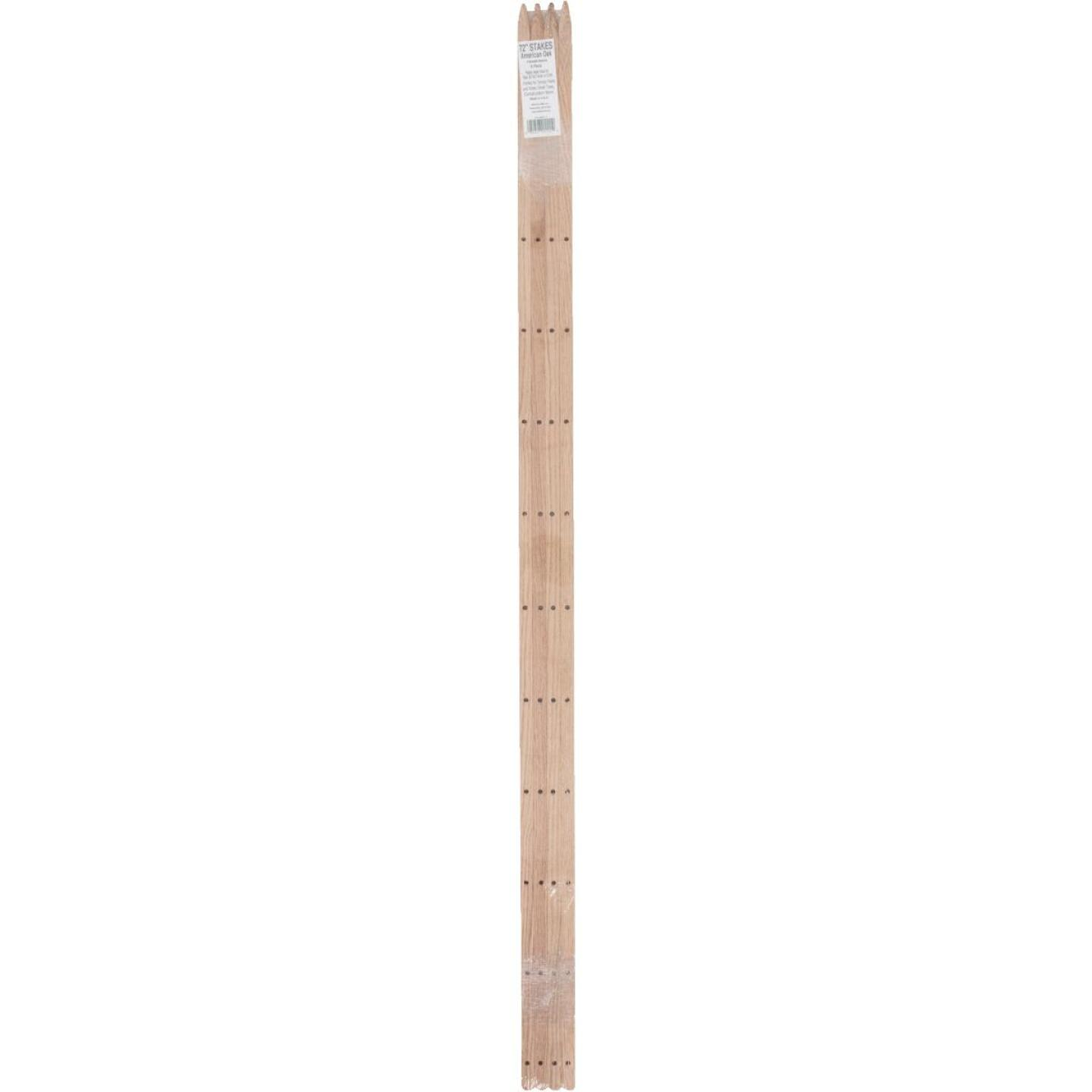 Madison Mill 72 In. Oak Wood Plant Stake (4-Pack) Image 2