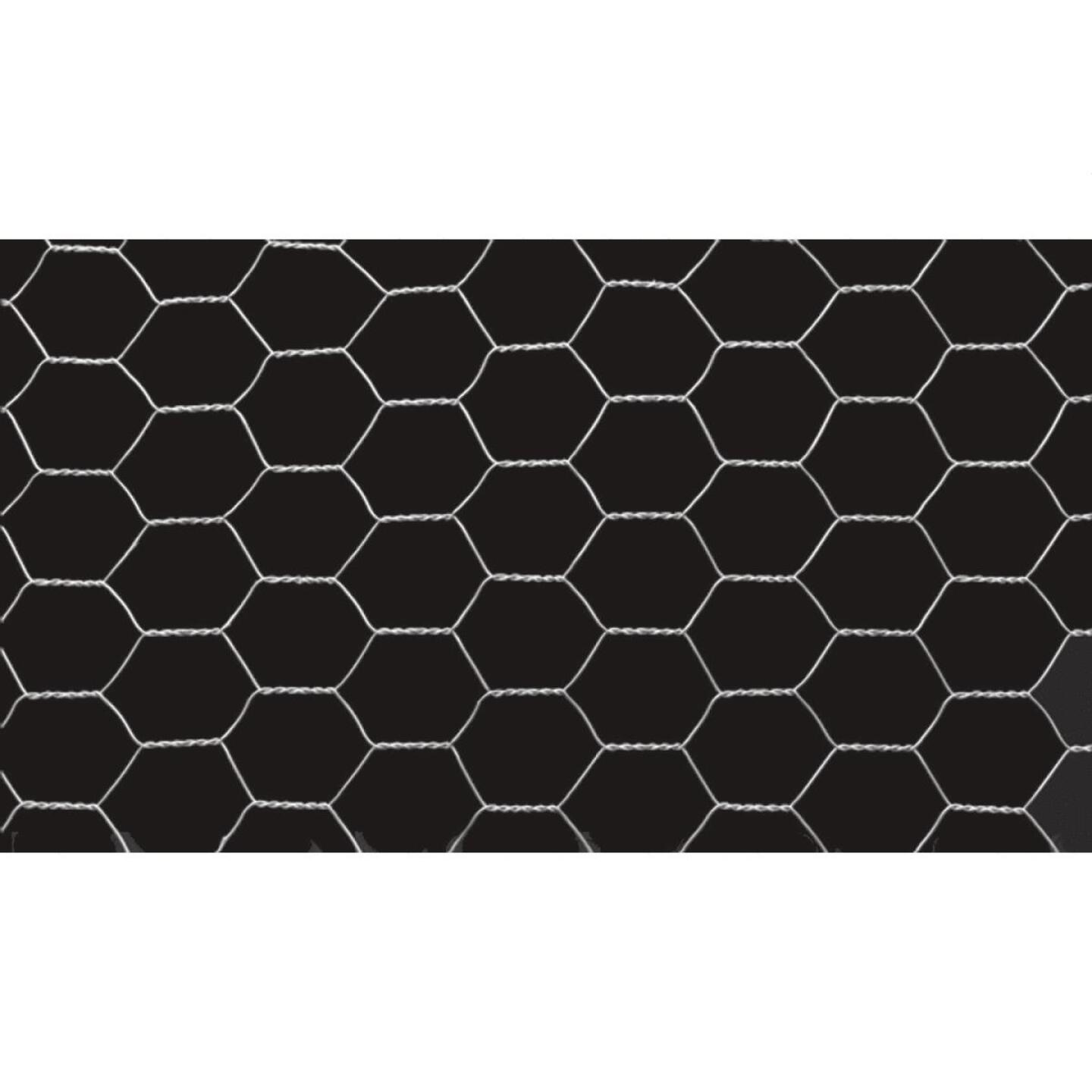Do it 1 In. x 48 In. H. x 25 Ft. L. Hexagonal Wire Poultry Netting Image 2