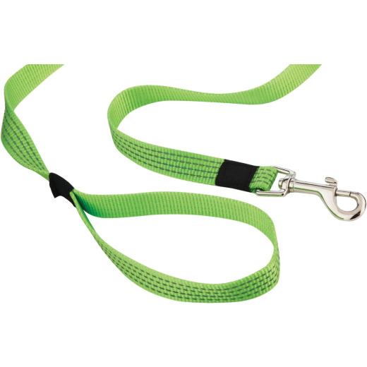 Westminster Pet Ruffin' it Reflective 6 Ft. High Visibility Dog Leash
